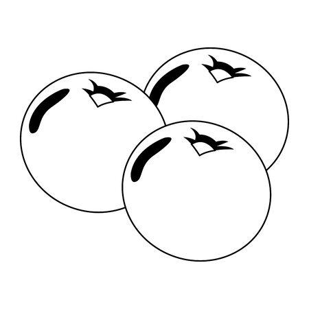 autumn acorns fruits seasonal icons vector illustration design Çizim
