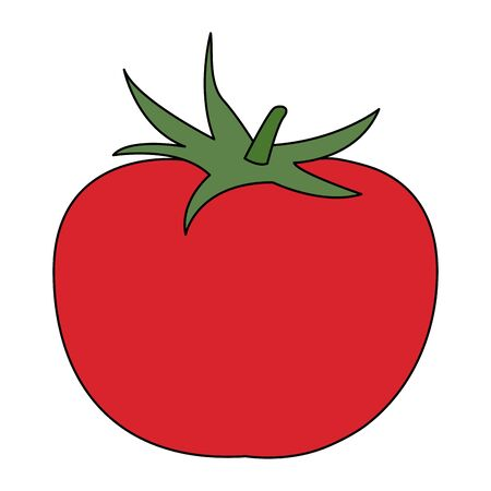 tomato vegetable icon over white background, vector illustration