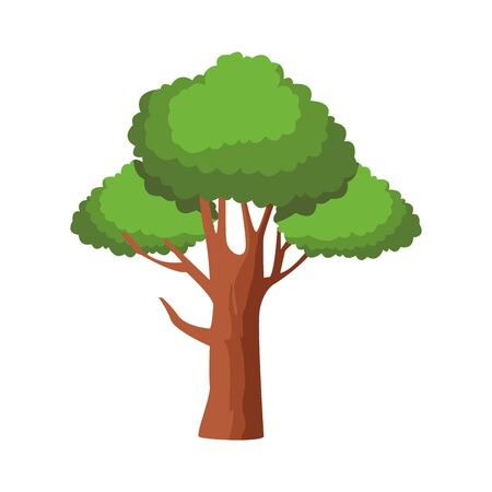 tree icon over white background, colorful design. vector illustration Banque d'images - 133848854