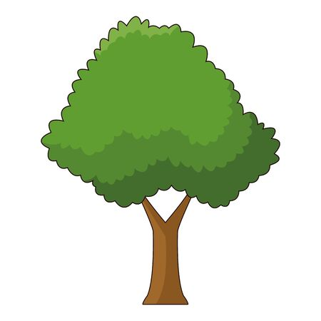 Nature tree with leaves park cartoon vector illustration graphic design. Banque d'images - 133849708