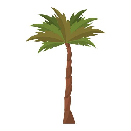 nature palm tree environment cartoon vector illustration graphic design Banque d'images - 133849736