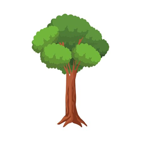 tree icon over white background, colorful design. vector illustration Banque d'images - 133851042
