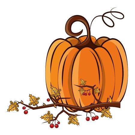 thanksgiving pumpkin with branch and leafs vector illustration design