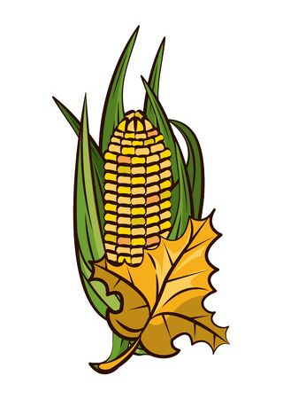corn cob vegetable and leafs thanksgiving icon vector illustration design Stock Illustratie