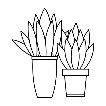 Decorative house plant pots cartoon vector illustration graphic design 일러스트