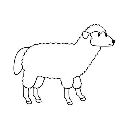 farm cute mammal animal sheep cartoon vector illustration graphic design