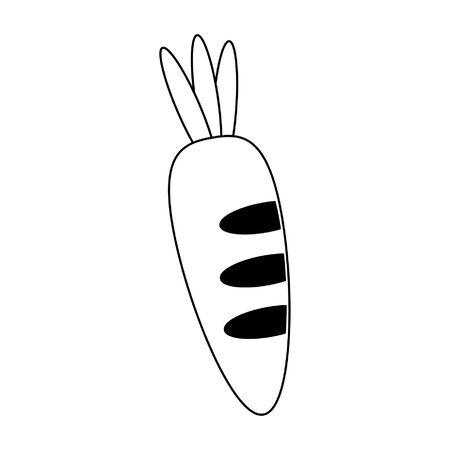 Carrot vegetable food symbol vector illustration graphic design Ilustrace