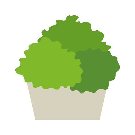 bushes in a pot icon over white background, vector illustration Stock fotó - 134320908