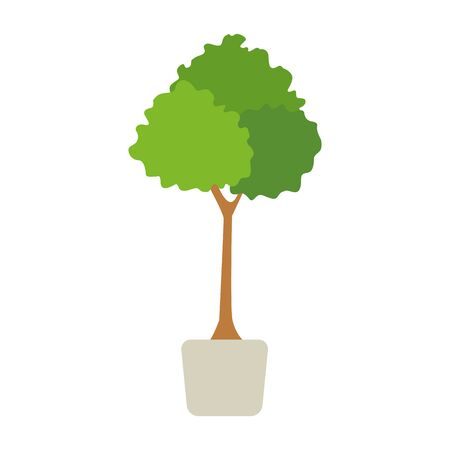 tree plant in the pot icon over white background, vector illustration