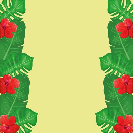 frame with tropical leaves and flowers over green background, colorful design , vector illustration