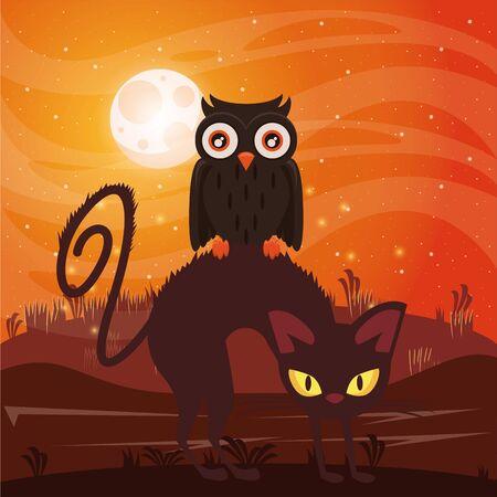 halloween dark scene with cat and owl vector illustration design Imagens - 134493226