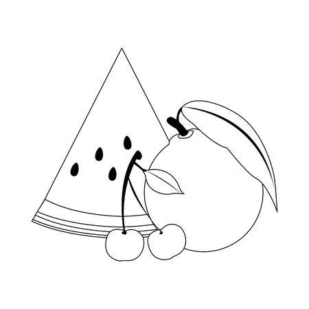 orange, watermelon and cherries icon over white background, vector illustration