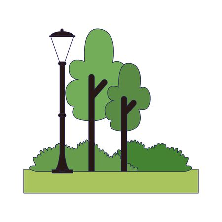 park with trees and street light over white background, colorful design , vector illustration Illustration