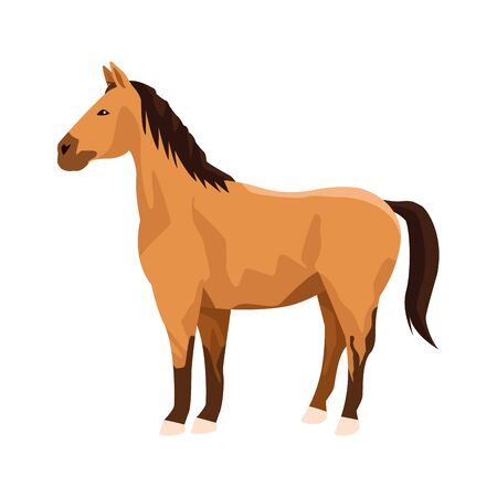 horse icon over white background, vector illustration 일러스트