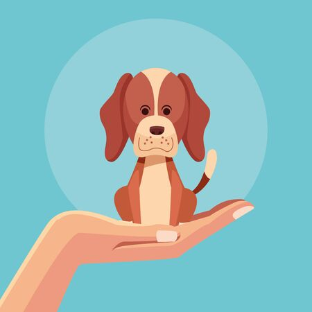 Hand with dog pet blue background vector illustration graphic design Stock Vector - 134857548