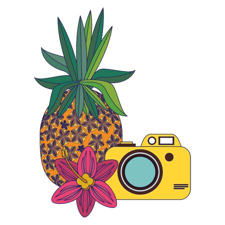 summer beach and vacation with pineapple, photographic camera icon cartoons vector illustration graphic design