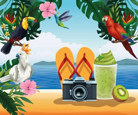 Summer and vacations cartoon on sand beach with exotic birds and flowers scenery. vector illustration graphic design Illustration