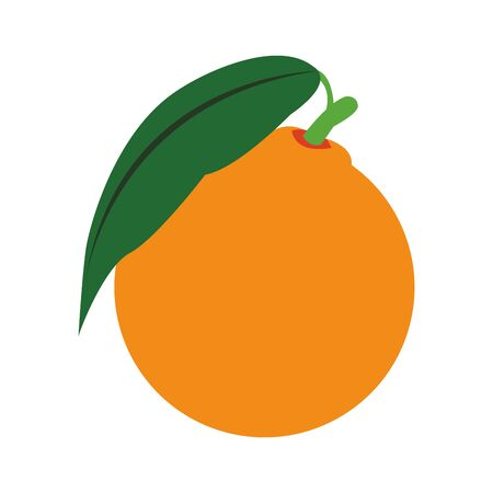 orange fruit icon over white background, vector illustration