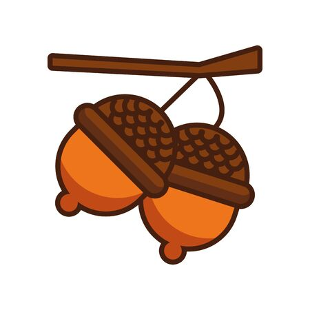 seed acorn autumn nature icon vector illustration design