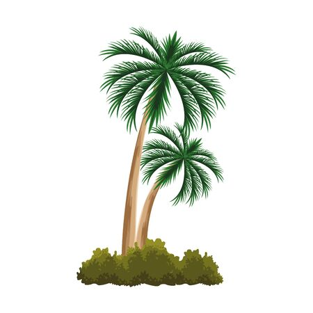 palms and bushes icon over white background, vector illustration