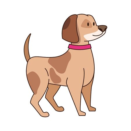 cute dog with collar icon over white background, vector illustration