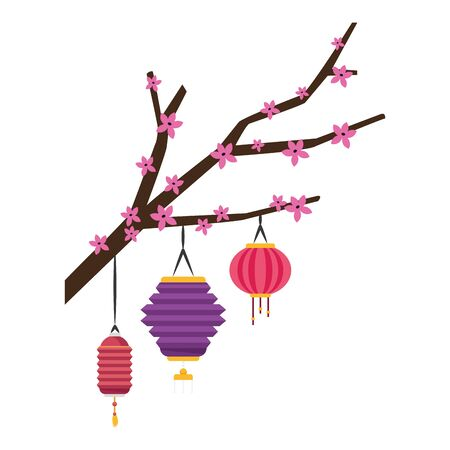 blossom tree branch with chinese lantern icon over white background, colorful design, vector illustration