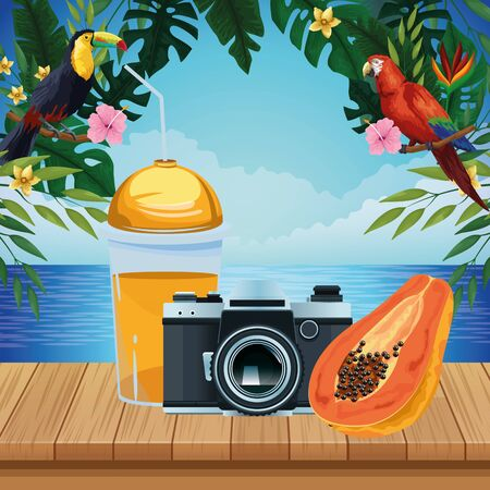 summer beach and vacation with photographic camera, tropical fruit and smoothie drink icon cartoon over the wooden floor with seascape vector illustration graphic design