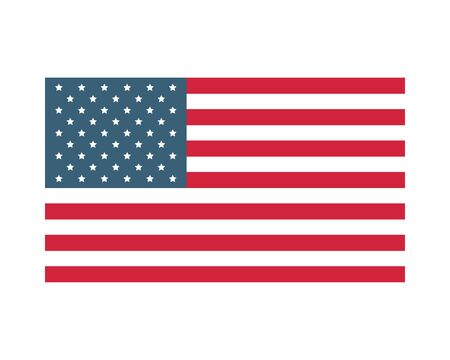 united states american flag icon vector illustration design