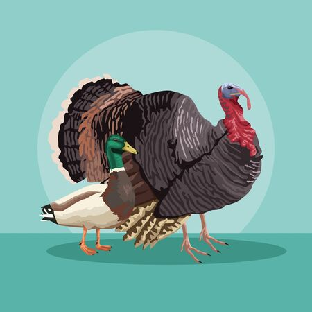 turkey and duck animals farm vector illustration design