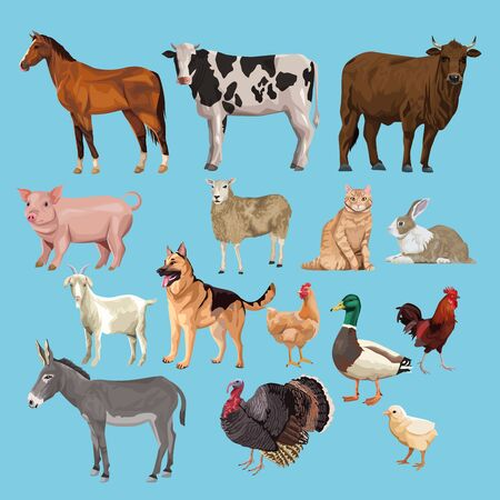 group of animals farm characters vector illustration design Ilustrace