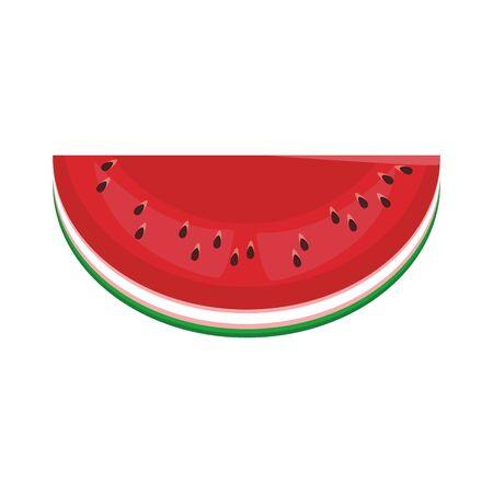 watermelon icon over white background, vector illustration Ilustrace