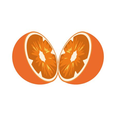 halved orange fruit icon over white background, vector illustration