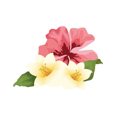 beautiful tropical flowers icon over white background, vector illustration