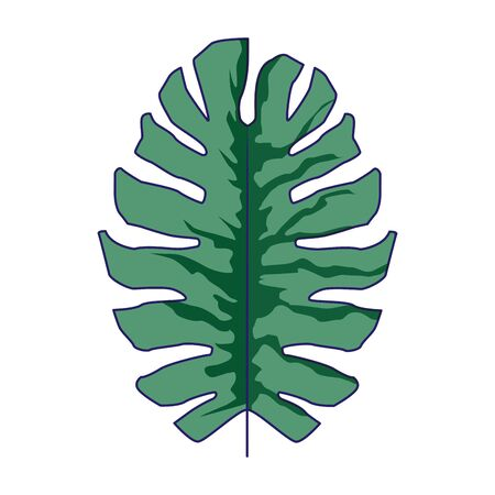 tropical leaf icon over white background, colorful design, vector illustration 向量圖像