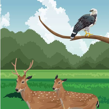 deers and eagle on branch tropical fauna and flora landscape vector illustration Stock Illustratie
