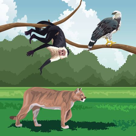 feline eagle and monkey on branch tropical fauna and flora landscape vector illustration