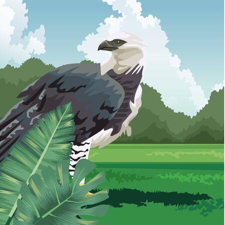 tropical eagle monstera leaves fauna and flora landscape vector illustration Stock Illustratie