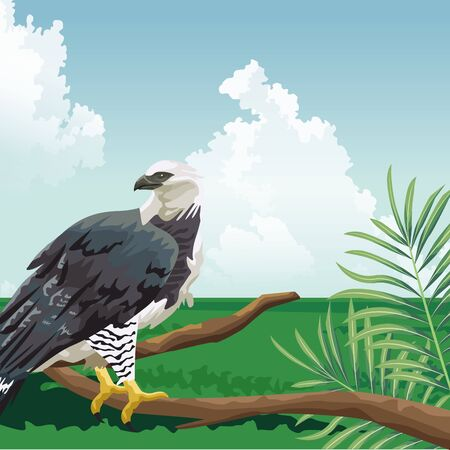 eagle on branch sky meadow tropical fauna and flora landscape vector illustration