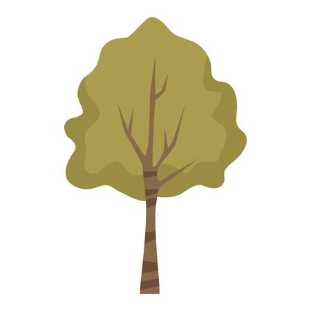 tall tree icon over white background, colorful design. vector illustration