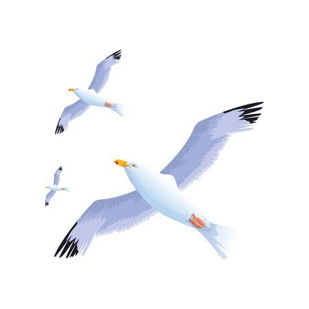 gulls flying icon over white background, colorful design, vector illustration Иллюстрация