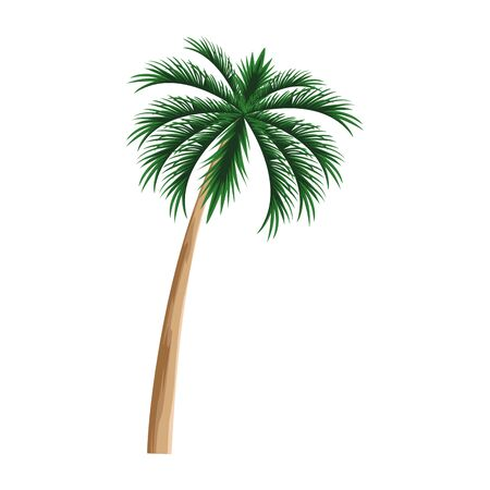 palm icon over white background, vector illustration