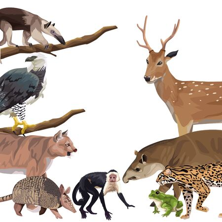 group of wild animals characters vector illustration design
