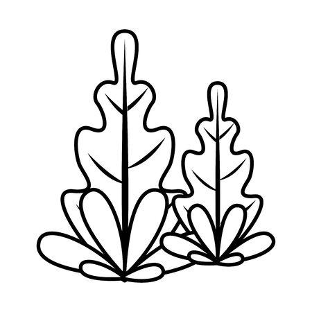 autumn leafs plants nature icons vector illustration design Foto de archivo - 138286874