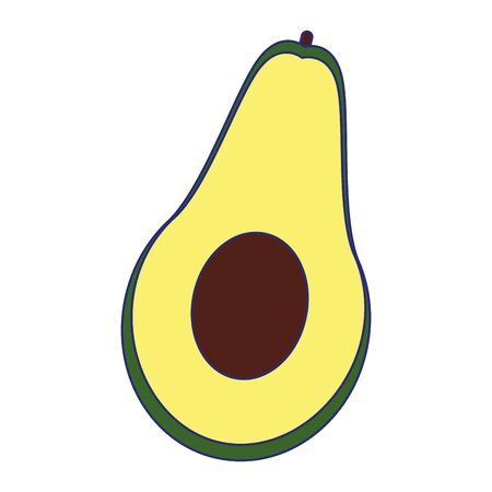 Avocado design, Fruit healthy organic food sweet and nature theme Vector illustration
