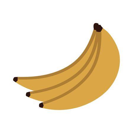 bananas fruit icon over white background, vector illustration  イラスト・ベクター素材