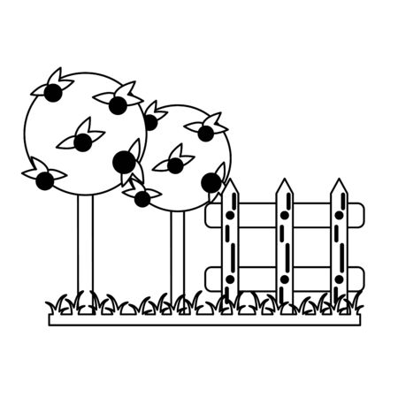 Garden with oranges trees and fence Designe