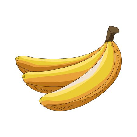 bananas fruits icon over white background, vector illustration