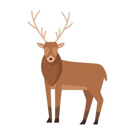 horned deer icon over white background, colorful design, vector illustration Ilustração