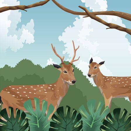 deers foliage nature tropical fauna and flora landscape vector illustration