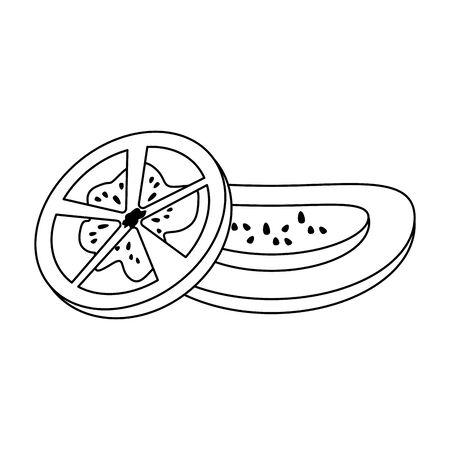 tomato slices over white background, vector illustration